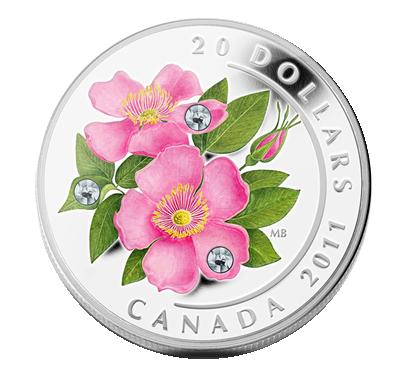 Kanada Wildrose mit Swarovski