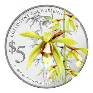 singapore-orchids-2014-coelogyne-rochussenii-1-oz-silber-koloriert-2