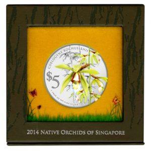 singapore-orchids-2014-coelogyne-rochussenii-1-oz-silber-koloriert