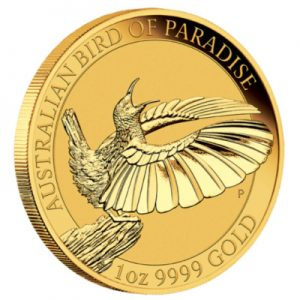australian-bird-of-paradise-1-oz-gold