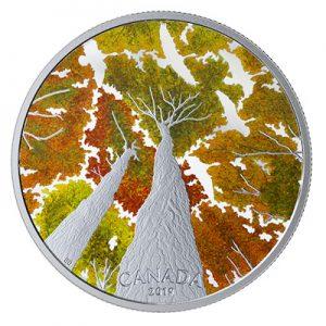 canadian-canopy-kanadagans-2-oz-silber-koloriert