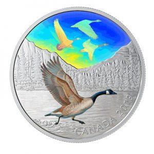 canada-majestic-birds-kanadagans-2-oz-silber-koloriert