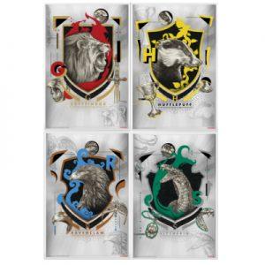 harry-potter-houses-of-hogwarts-banknoten-set