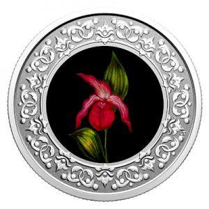 floral-emblems-of-canada-frauenschuh-silber-koloriert
