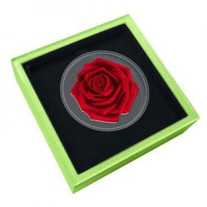 blumenserie-rose-1-oz-silber-koloriert-etui